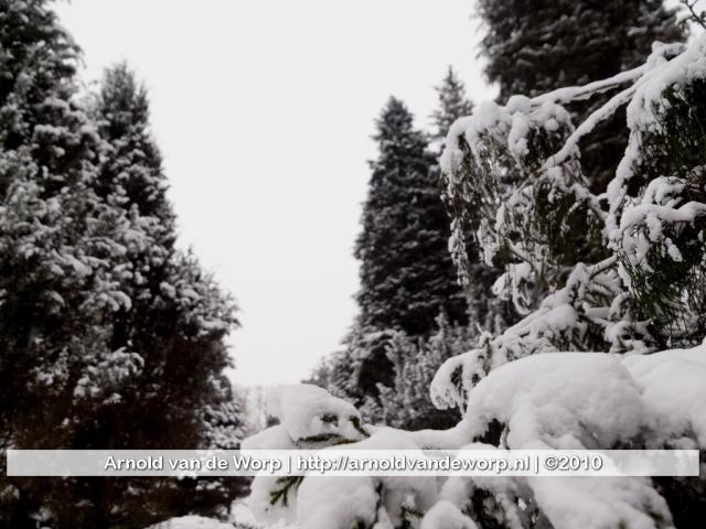 sneeuw dec 2010